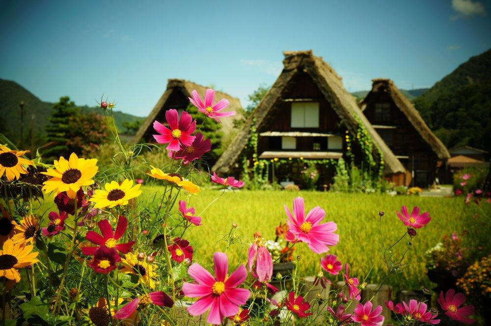 Tips On Travelling To Shirakawa Go And Gokayama Japan